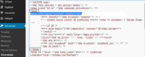 otomatik-sayfa-yenileme-kodu