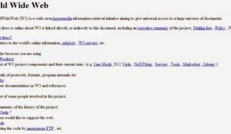 dunyanin-ilk-web-sitesi