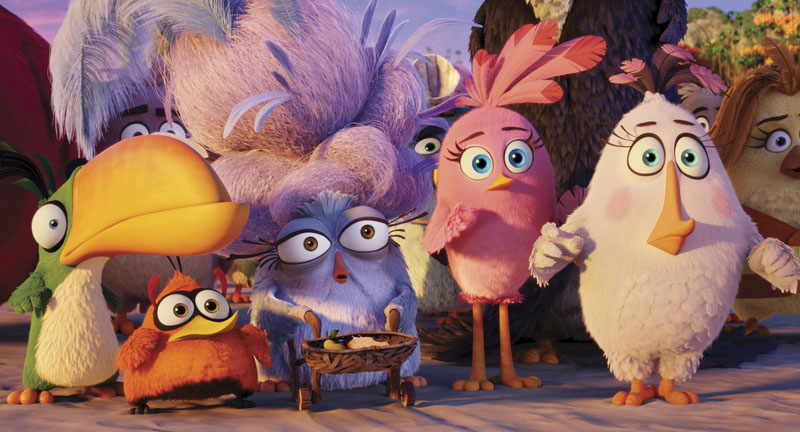 Hal (Anthony Padilla), Bubbles (Ian Hecox), Shirley (Cristela Alonzo), Stella (Kate McKinnon) and Matilda (Maya Rudolph) in Columbia Pictures and Rovio Animation's ANGRY BIRDS.