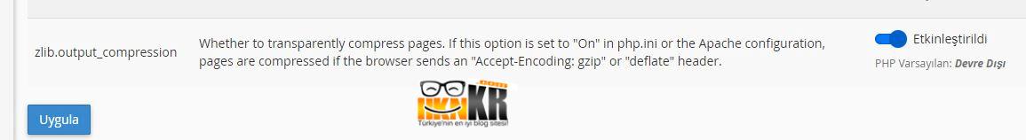 Wordpress GZIP Etkinleştirme