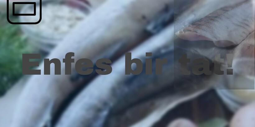 Soslu Balık Köftesi tarifi ile özellikle besin değeri yüksek bir menü sizi bekliyor olacak.